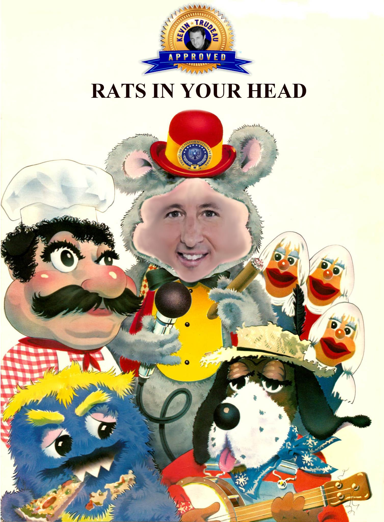 Rats in your Head
