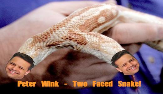 snakewink