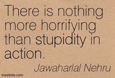 Quotation-Jawaharlal-Nehru-action-stupidity-Meetville-Quotes-248436